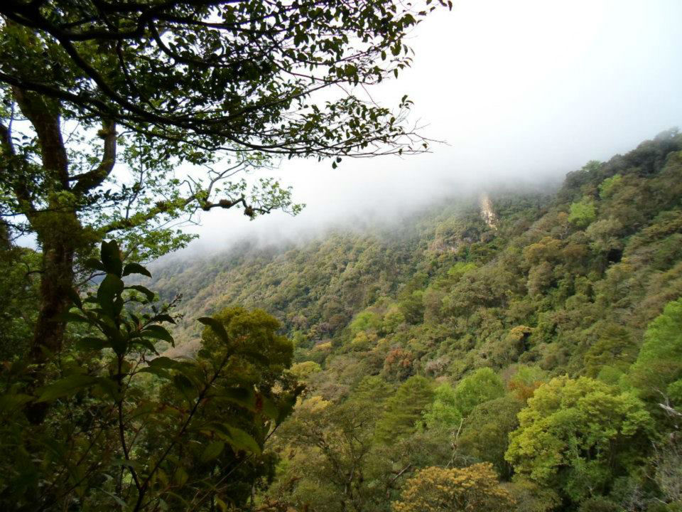 Santa Maria Guienagati ecoturismo
