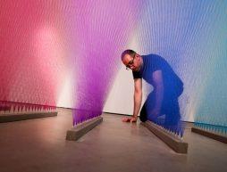 artistas mexicanidad gabriel dawe