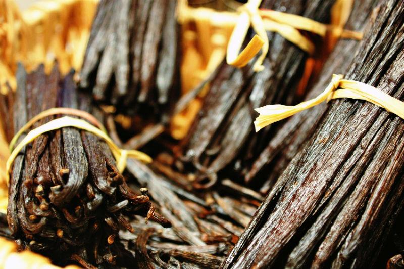 vainilla de papantla especias mexicanas
