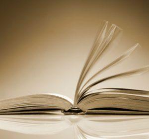 diccionario modismos espanol mexicano