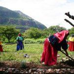 Lo que la inmensa riqueza biológica y cultural de México puede enseñarnos: entrevista con Raúl Benet