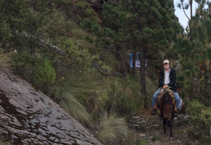 raul benet conservacion biodiversidad mexico