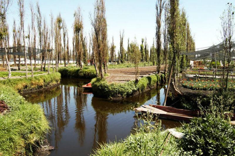 El sistema de chinampas es reconocido como Patrimonio Agrícola Mundial por la FAO