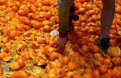 guerra de las naranjas xamage hidalgo