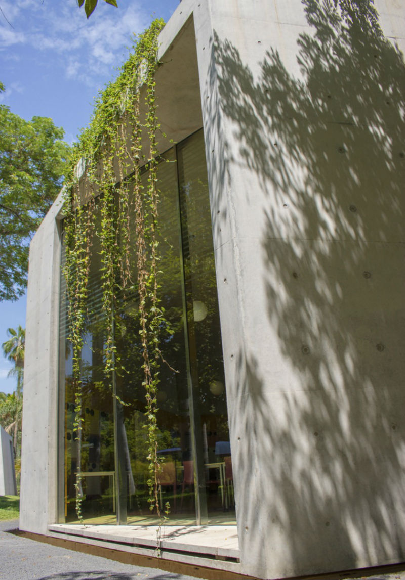 jardin botanico culiacan tatiana bilbao