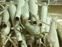 porros-hoja-maiz-tamales-cana