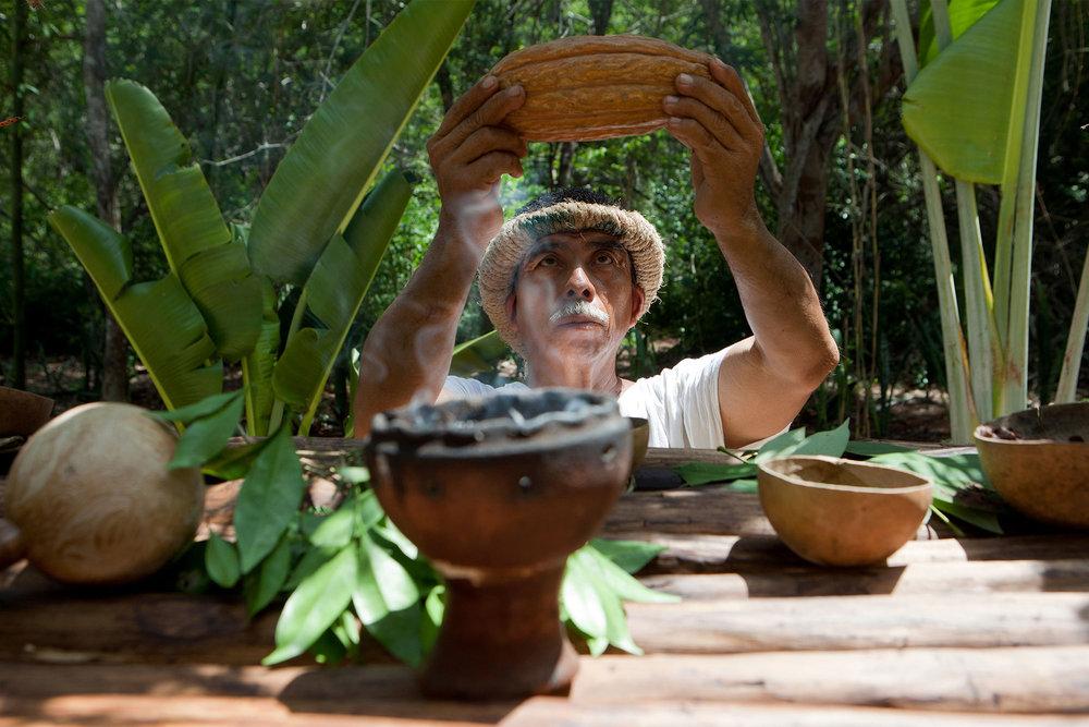 ceremonia del cacao experiencias misticas mexico