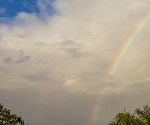 merida-ciudad-mas pacifica-mexico-turismo-lugares-mas-seguros-yucatan
