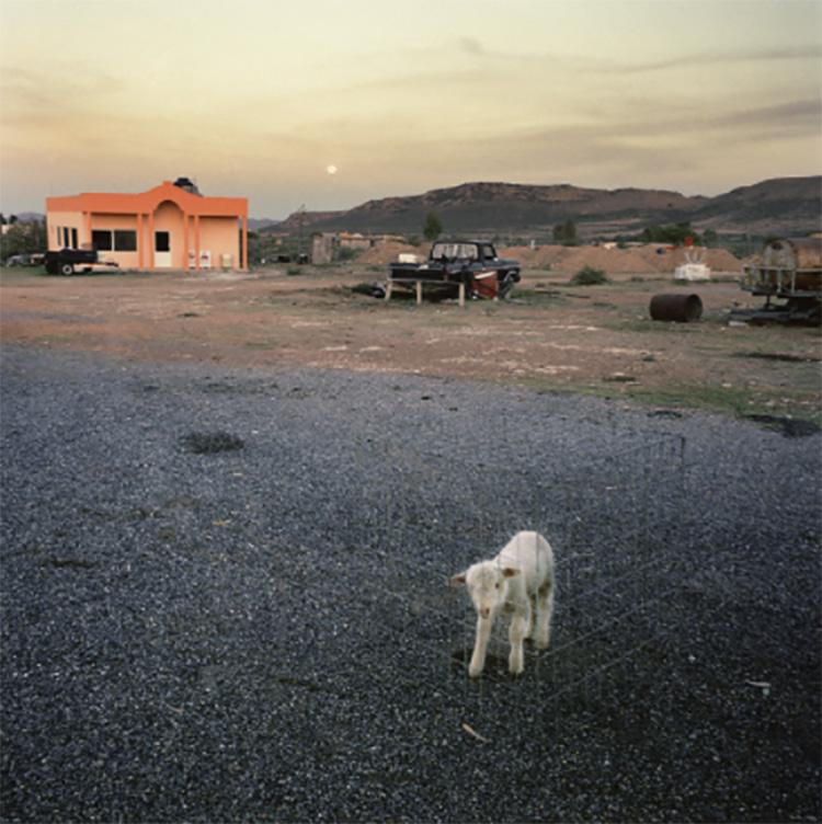maya-goded-fotografia-tierra-de-brujas-mejores-fotografos-15