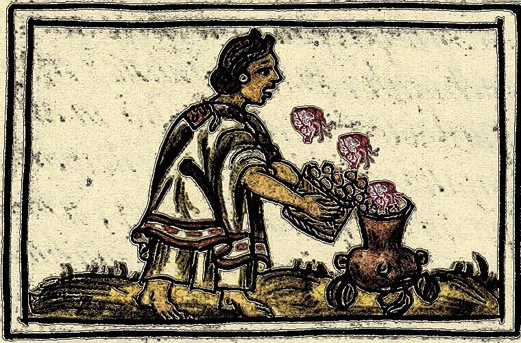 medicina-nahua-prehispanico-remedios-naturales-corazon-roto-4