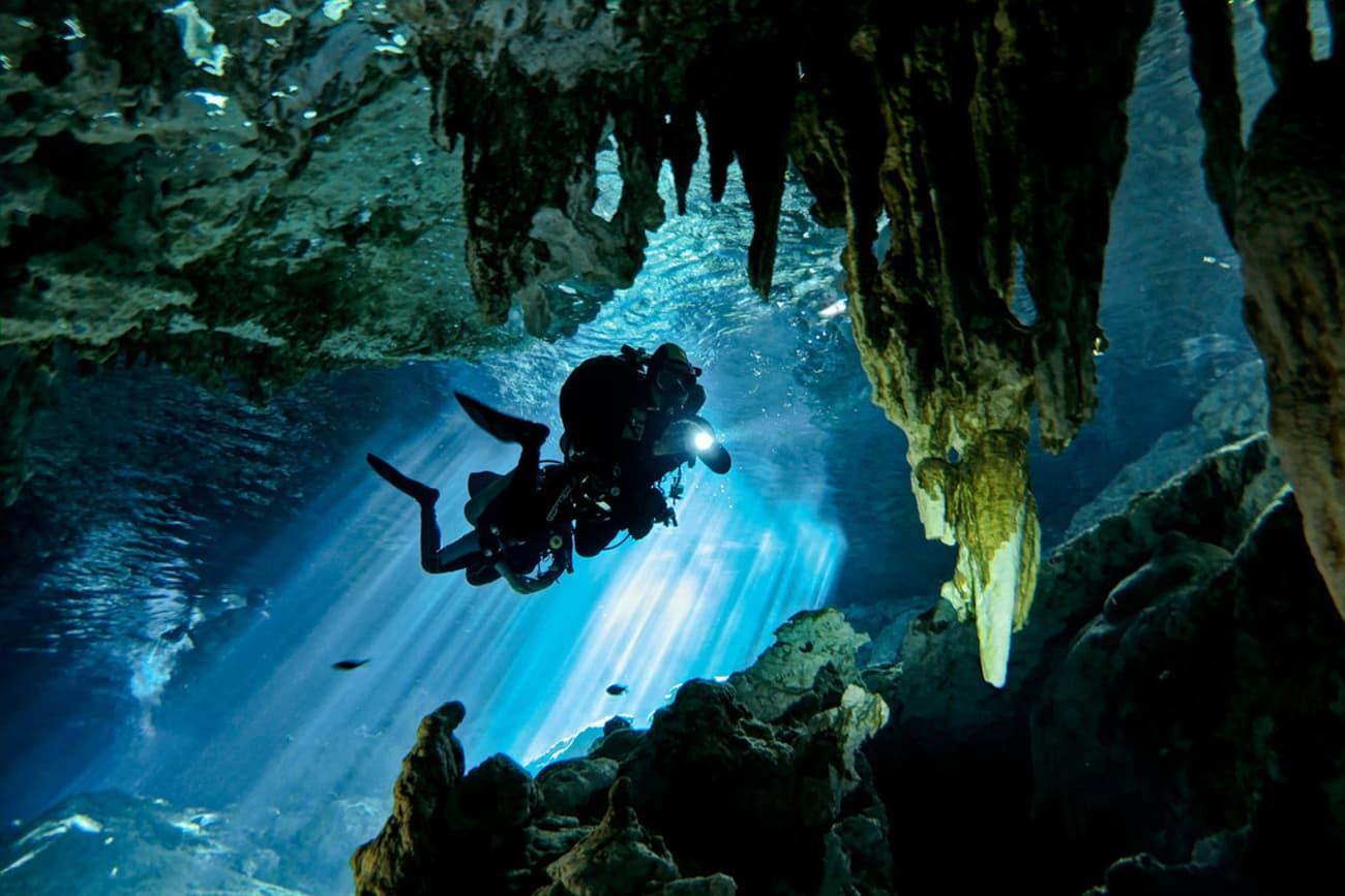 yucatan-cenotes-ecosistema-acuatico-descubren