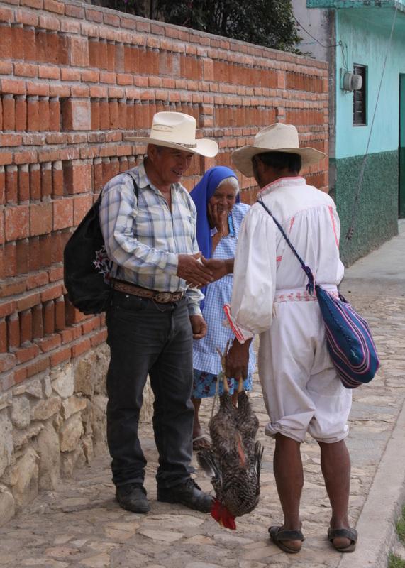 mexico-proyecto-comunitario-salud-indigenas-chiapas-trueque