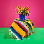 artista-mexicana-fotografa-publicidad-arte-contemporaneo-paloma-rincon