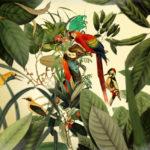 ilustrador-artista-collage-mexicano-surrealismo-mexico-guillermo-flores