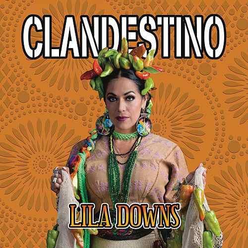 lila-downs-clandestino-cover-manu-chao-migrantes-mexicanos