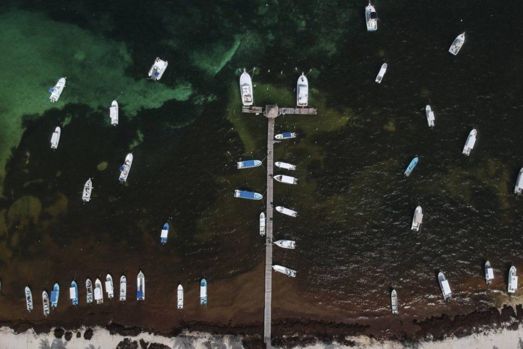 mexico-sargazo-playas-mexicanas-ecologia-casas-ladrillos-organicos-alternativas