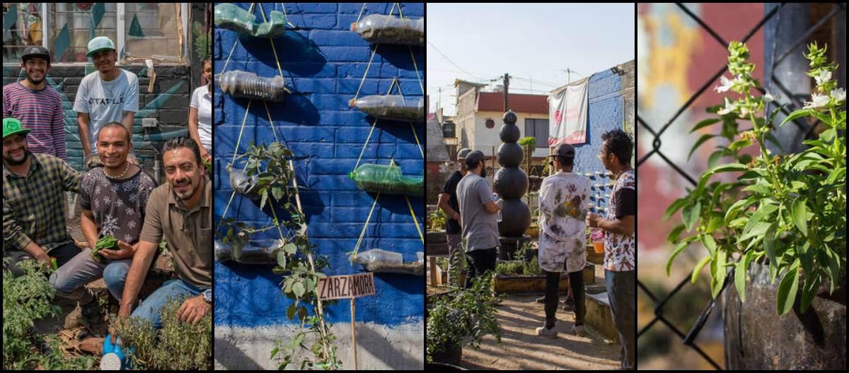 mexico-huerto-urbano-iztapalapa-cmdx-proyectos-colectivos-comunitarios