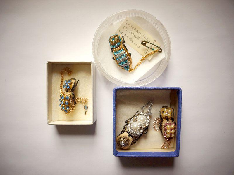 makech-escarabajos-joyas-joyeria-viva-vivos-mayas