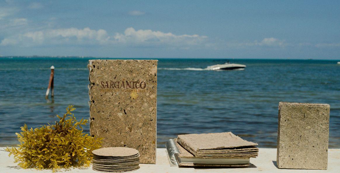 productos-hechos-sargazo-mexico-caribe-crisis-playas-solucion