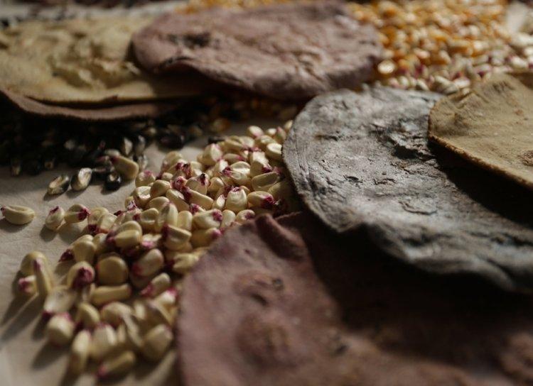 restaurantes-comer-maiz-nativo-cdmx-tamales-tortillas