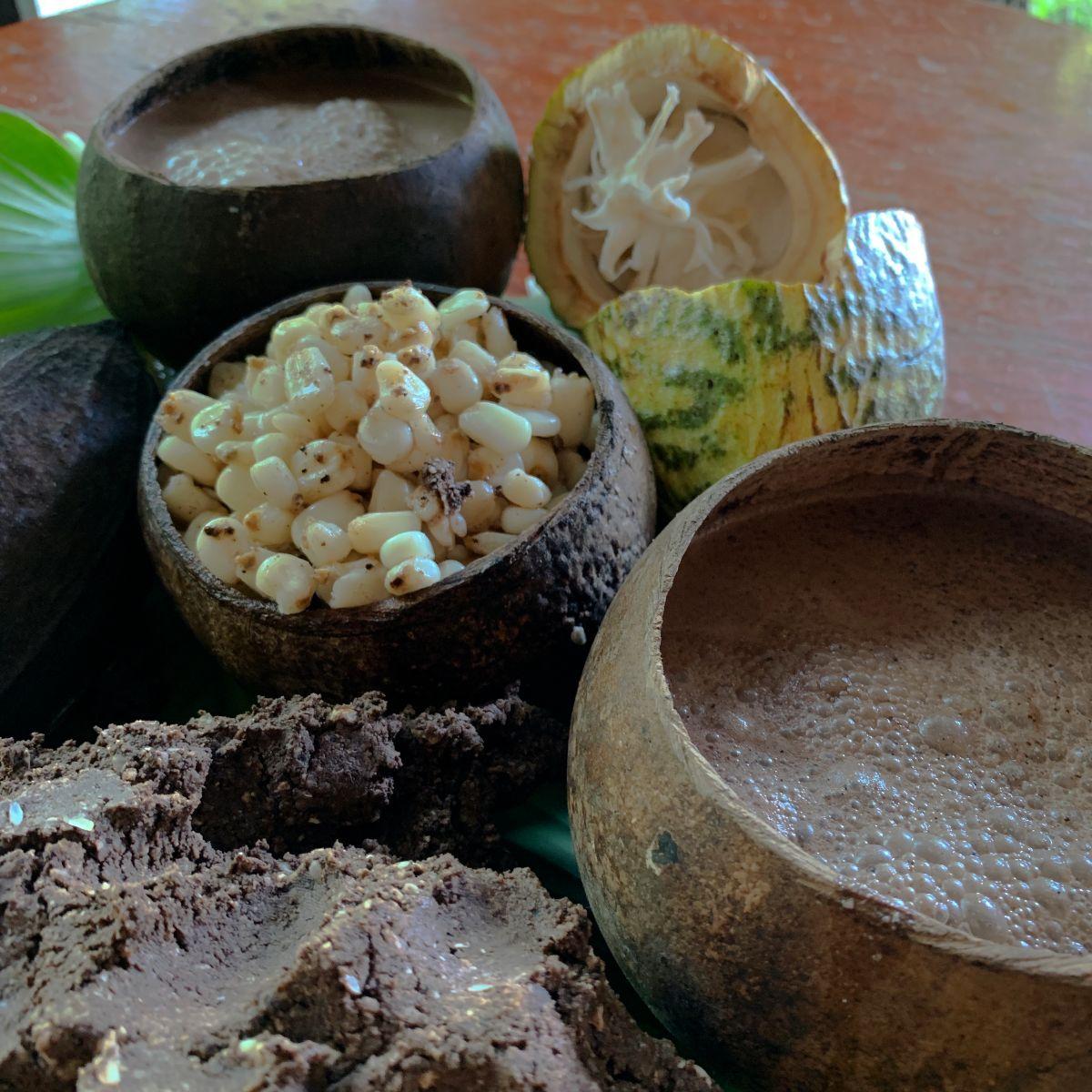 cacao-mexicano-mexico-donde-conseguir-festival