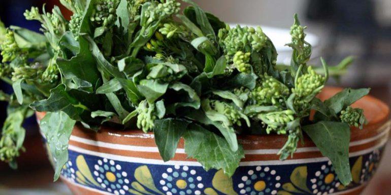 comer-quelites-curar-gastritus-beneficios-salud