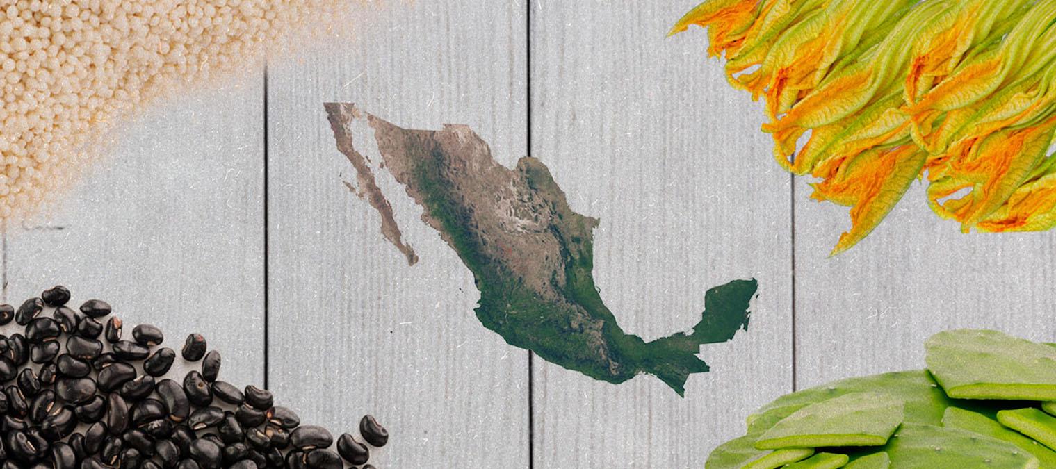 alimentos-futuro-mexicanos