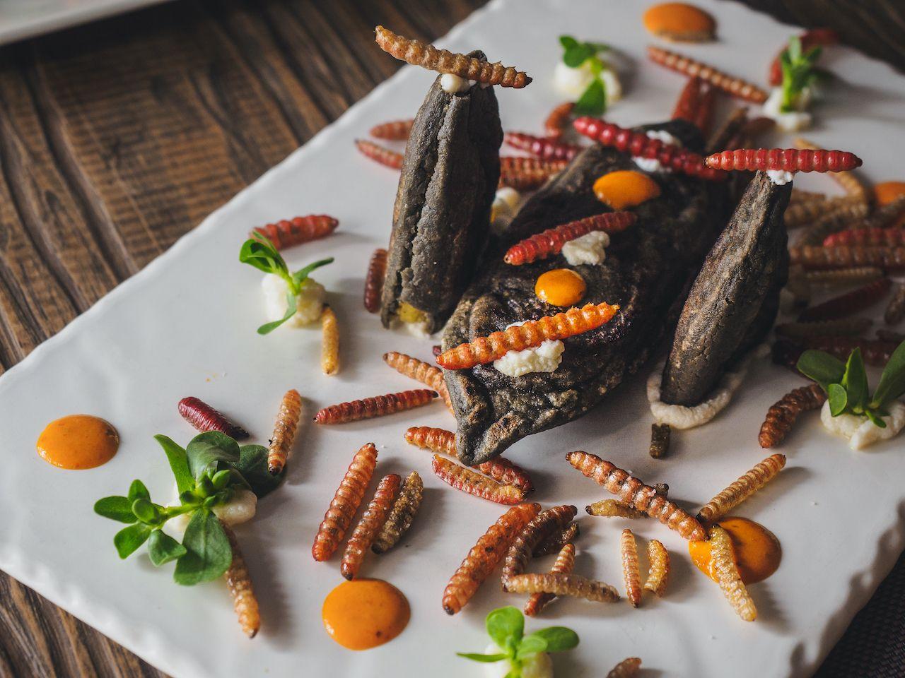 festival-gastronomico-insectos-comestibles-mexicanos