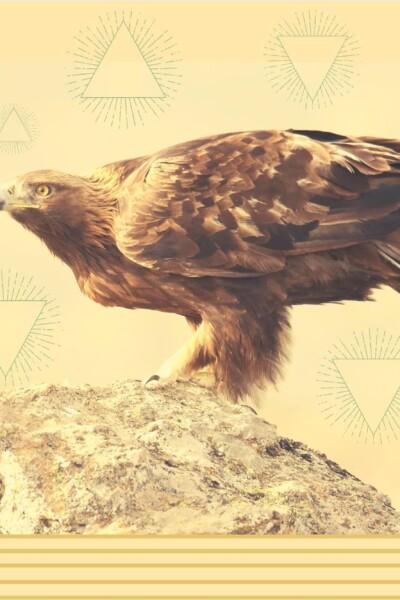 aguila-real-mexico-peligro-extincion-importancia-simbolo