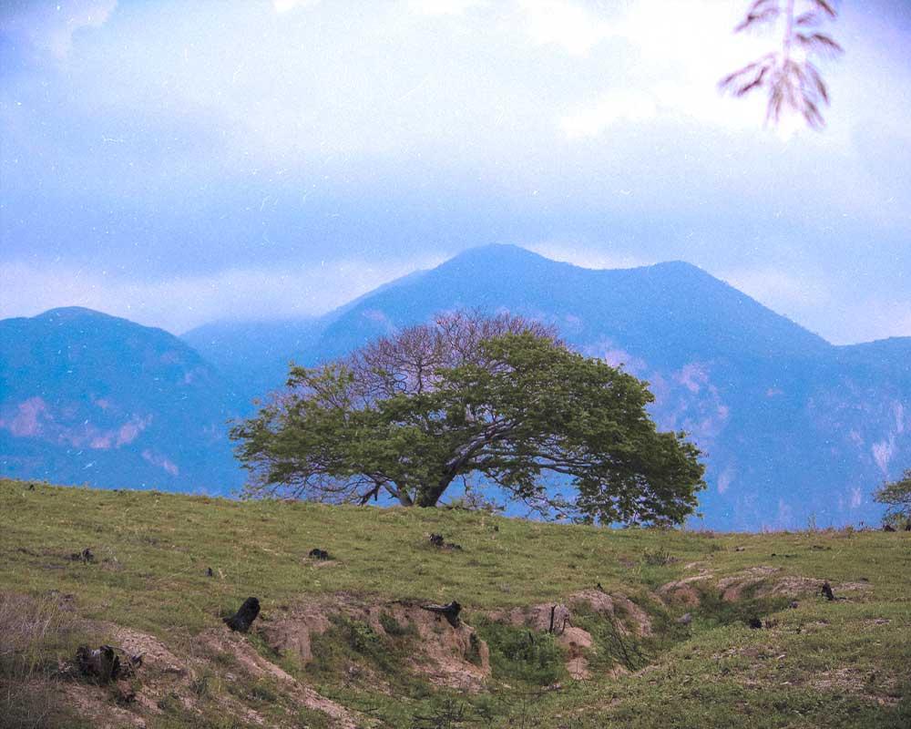cerro-Negro-oaxaca-montanas-mexico-mas-bonitas-grandes-historia