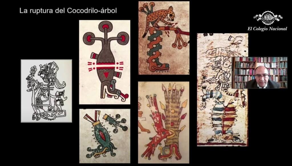 cosmogramas-mexicas-codices-mexico-cocodrilo-arbol-lopez-lujan