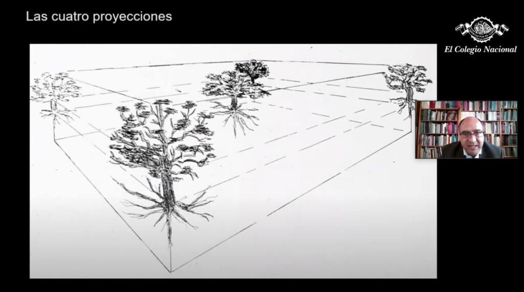 cosmogramas-mexicas-codices-mexico-proyecciones-cosmos