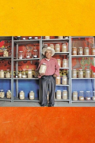 banco-semillas-comuniataria-oaxaca-importancia-zapata-diversidad