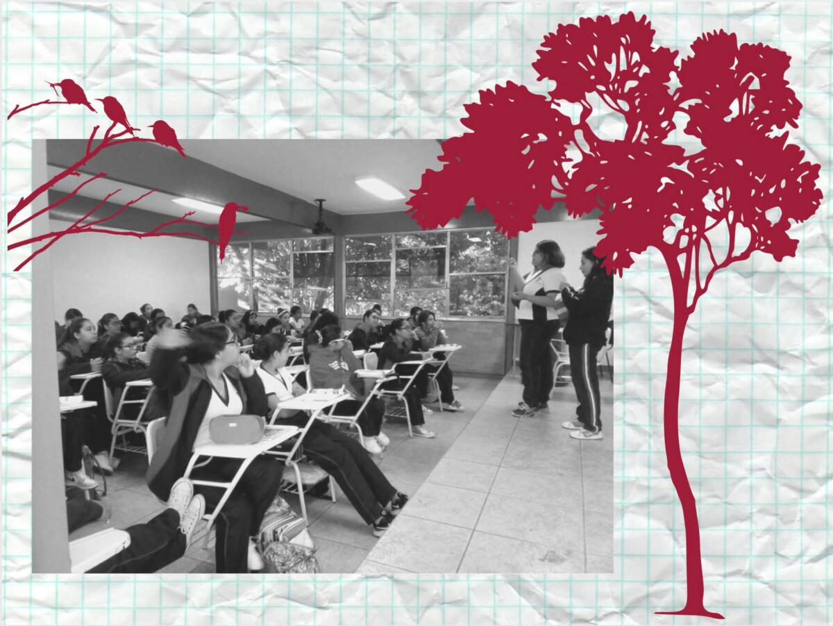 escuela-por-la-tierra-programa-mexico-educacion-sustentable