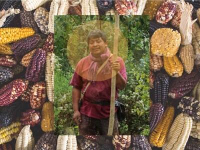 Agileo-velazquez-mixe-oaxaca-entrevista-mexico-pueblos-originarios-sabiduria-mexico
