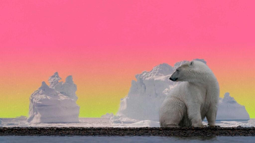 asamblea-ecologista-popular-crisi-climatica-mexico