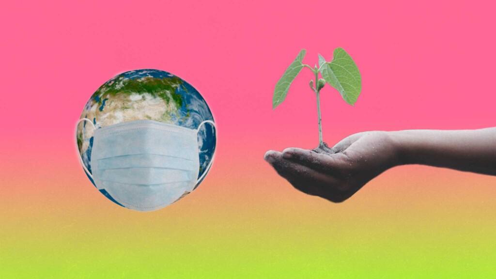 covid-asamblea-ecologista-popular-crisis-climatica-mexico