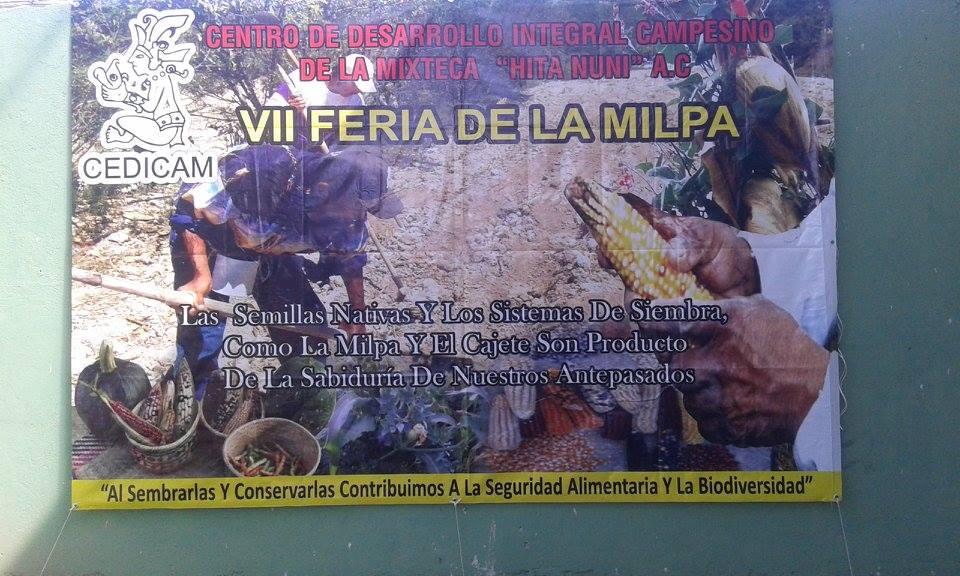 valorizacion-campo-mexicano-oaxaca-estigma
